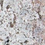 Bianco-Antico-Granite.jpg