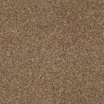 Brownhill-4000x1900_RGB_17V2